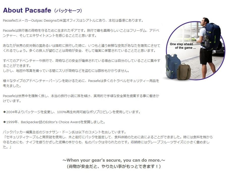 about pavsafe パックセーフについて