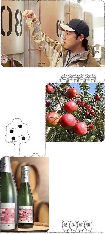青森のおいしいりんごがそのままシードルに