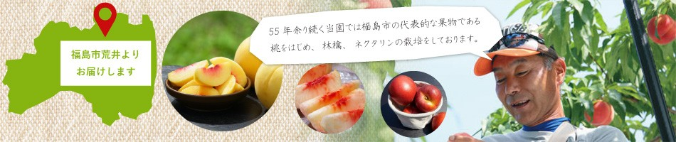 55年余り続く当園では福島市の代表的な果物である桃をはじめ、林檎、ネクタリンの栽培をしております。