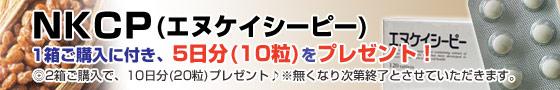 NKCP1箱ご購入で10粒プレゼント