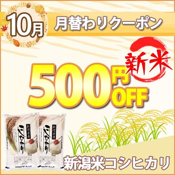 月替わりお得なクーポン!2020年10月は新米!新潟県産コシヒカリ!