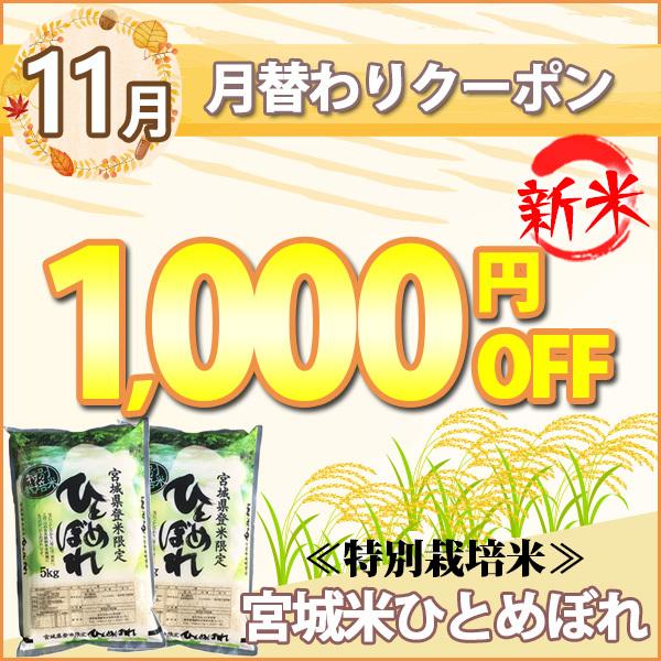 月替わりお得なクーポン!2020年11月は特別栽培米!宮城県産ひとめぼれ!
