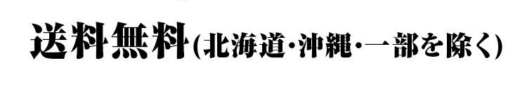 送料無料(北海道・沖縄・一部を除く)