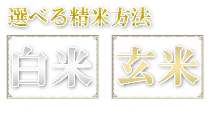 選べる精米方法白米玄米