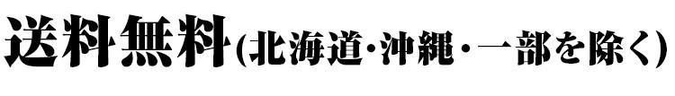 送料無料 北海道・沖縄・一部地域を除く