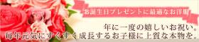 秋冬-誕生日プレゼント・誕生日祝いセット