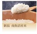 新潟 南魚沼産米