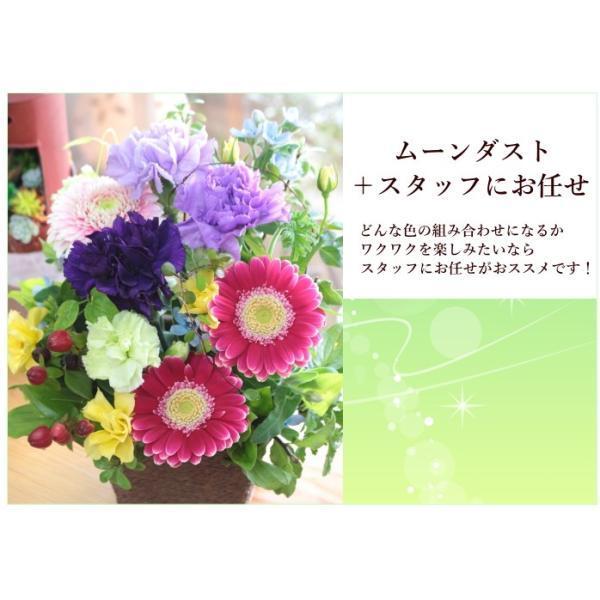 敬老の日 フラワーアレンジ 紫カーネーション プレゼント  誕生日 お祝い お礼  送料無料 クール便「お花おまかせムーンダストアレンジ」|agreable1999|15