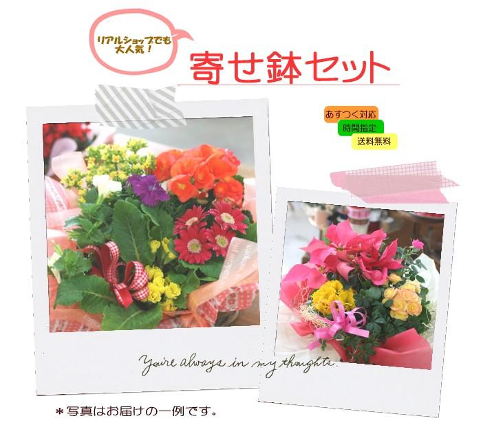 お中元 送別祝い 誕生日 記念 結婚 アレンジフラワー 寄せ鉢 花 プレゼント ギフト 喜寿 米寿