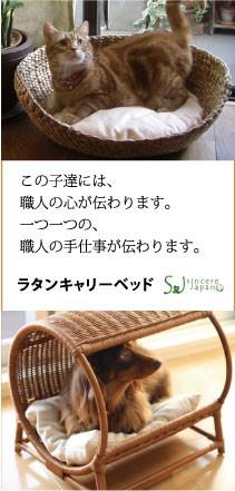 シンシアジャパン ラタンベッドキャリーハウス