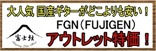 fgnリンク