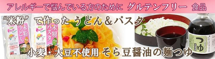 愛知県 送料無料 米粉うどん 米粉パスタ そら豆 麺つゆ 米粉 麺 小麦卵アレルギー アトピー 食塩不使用 グルテンフリー コシヒカリ