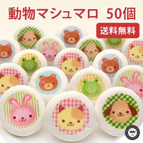動物マシュマロ(50個入)
