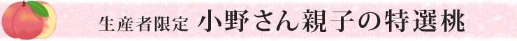 生産者限定 小野さん親子の特選桃