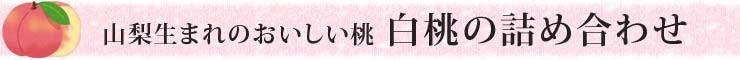 山梨生まれのおいしい桃 白鳳