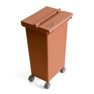 ゴミ箱 おしゃれ キッチン 分別 ふた付き 蓋付き 21L ダストボックス ごみ箱 おしゃれ スリム コンテナ スライド蓋 キャスター付き シンプル インテリア|air-r|07
