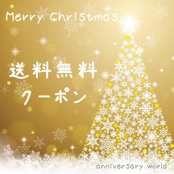 クリスマスプレゼント♪限定クーポン!