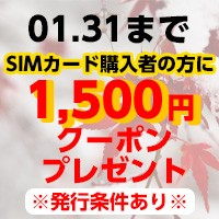 SIMキャンペーン