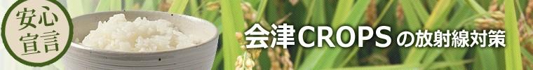 会津クロップスの放射線対策