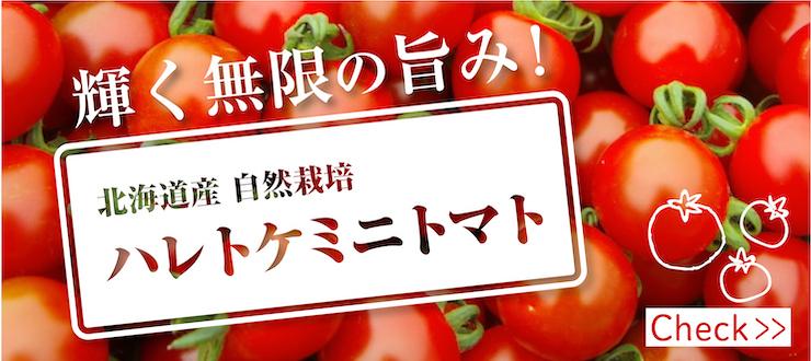 ハレトケミニトマト