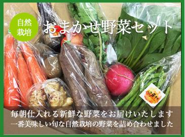 中身おまかせ☆自然栽培野菜セット