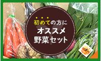 初めての方にオススメ野菜セット
