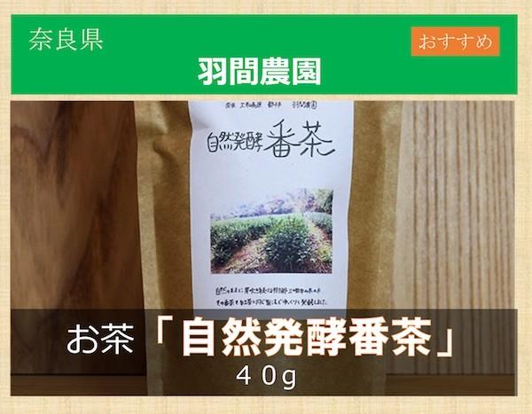 自然発酵 番茶