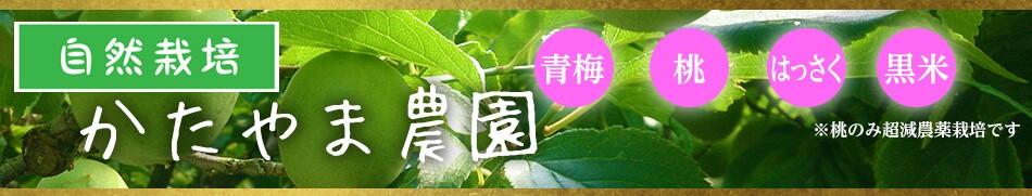 和歌山から自然栽培の果物をお届けします