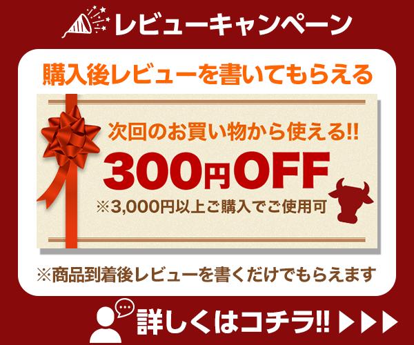 レビューを書いて300円OFFクーポンをもらおう!