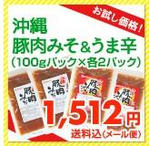 【お試し価格!】沖縄豚肉みそ&うま辛(100gパック×各2パック) 1,400円送料込(メール便)