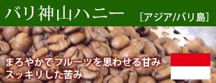 バリ神山ハニー