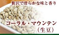 コーラルマウンテン(生豆)