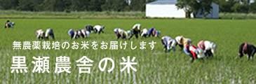 黒瀬農舎の米