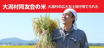 大潟村同友会の米