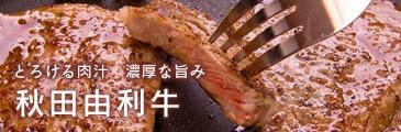 秋田由利牛
