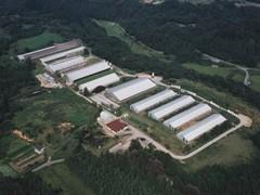 雄大な自然に囲まれた生産農場