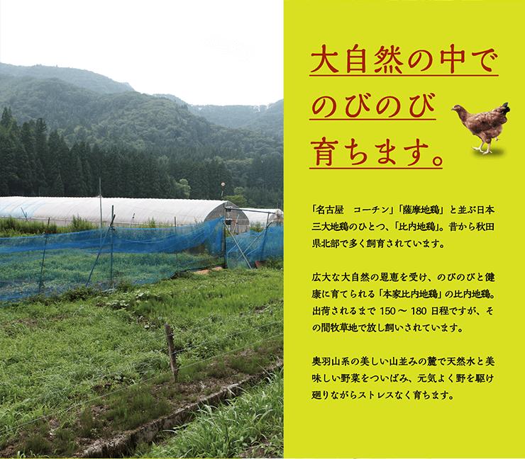 大自然の中でのびのび育ちます。 「名古屋 コーチン」「薩摩地鶏」と並ぶ日本三大地鶏のひとつ、「比内地鶏」。昔から秋田県北部で多く飼育されています。広大な大自然の恩恵を受け、のびのびと健康に育てられる「本家比内地鶏」の比内地鶏。出荷されるまで150〜180日程ですが、その間牧草地で放し飼いされています。奥羽山系の美しい山並みの麓で天然水と美味しい野菜をついばみ、元気よく野を駆け廻りながらストレスなく育ちます。