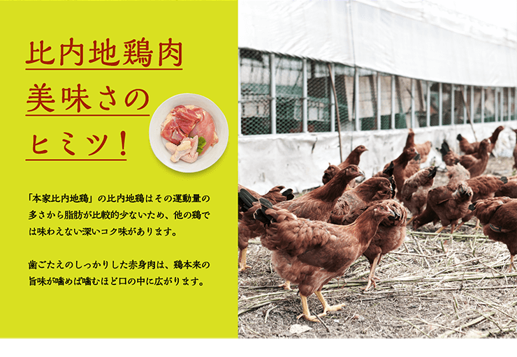 比内地鶏肉美味さのヒミツ! 「本家比内地鶏」の比内地鶏はその運動量の多さから脂肪が比較的少ないため、他の鶏では味わえない深いコク味があります。歯ごたえのしっかりした赤身肉は、鶏本来の旨味が噛めば噛むほど口の中に広がります。