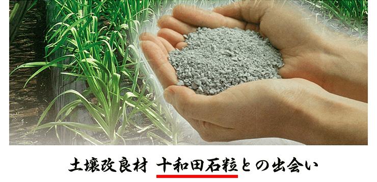 土壌改良材 十和田石粒との出会い