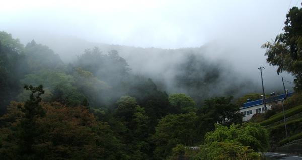 濃い霧が発生するほどの高地