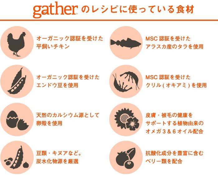 gatherのレシピに使っている食材
