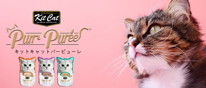 kitcat キットキャット パーピューレ