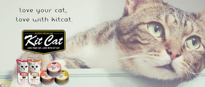 kitcat キットキャット love your cat, love with kitcat