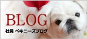 激安ペットシーツとペット用品のお店ALLFORWAN'sLIFEブログ