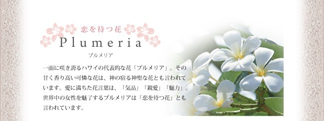 プルメリア1