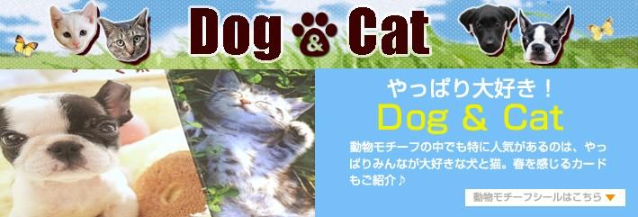 やっぱり大好き!Dog & Cat 動物モチーフの中でも時に人気があるのは、やっぱりみんなが大好きな犬と猫。春を感じるカードもご紹介♪
