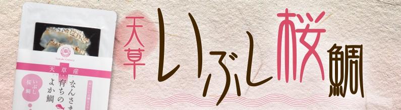 天草いぶし桜鯛