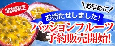 奄美大島のパッションフルーツ