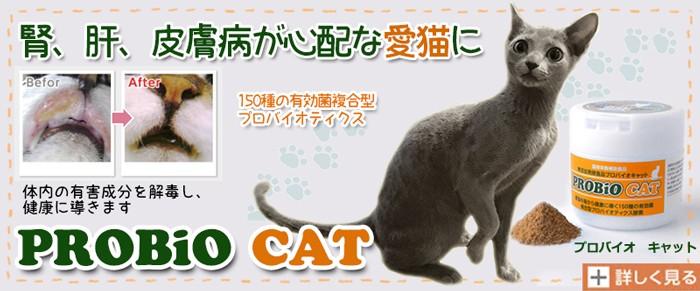 プロバイオ CAT