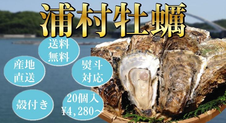 浦村セル牡蠣